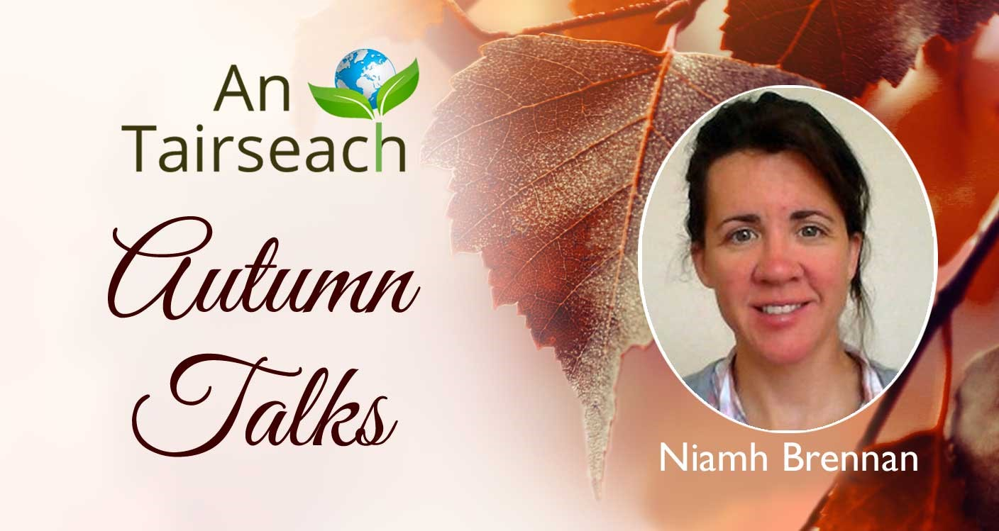 Cosmology with Niamh Brennan