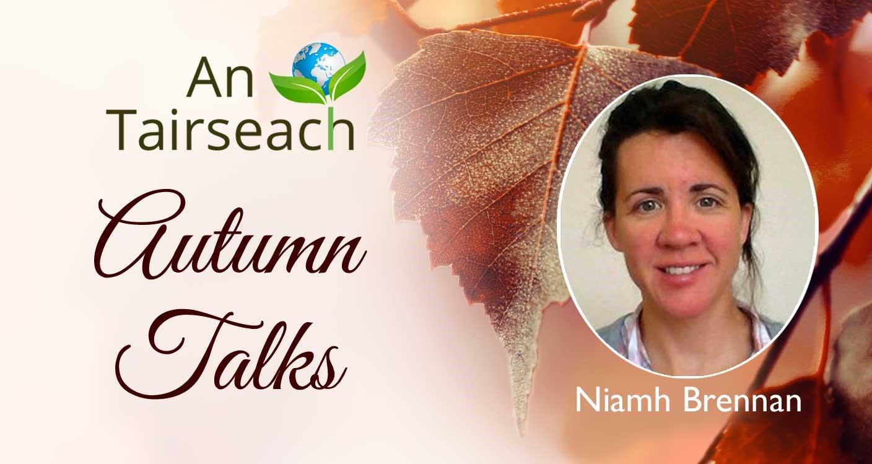 Cosmology with Niamh Brennan
